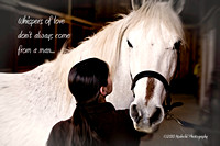 For the love of horses...